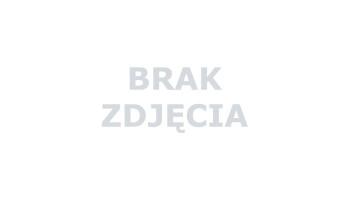 GRANIT CHIŃSKI G603 BIANCO CRISTAL PŁOMIEŃ